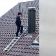 Günzburger Aluminium Dachleiter 15 Sprossen Aluminium-small