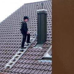 Günzburger Aluminium Dachleiter 15 Sprossen braun
