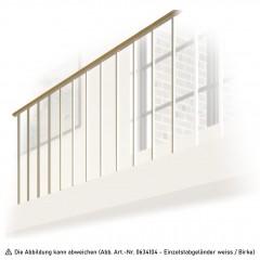 Dolle Brüstungsgeländer mit Holzhandlauf Buche/Birke 1m passend für Mittelholmtreppen Frankfurt, Hamburg, Berlin und Dublin