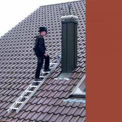 Günzburger Aluminium Dachleiter 10 Sprossen rot