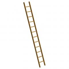 Günzburger Holz-Anlegeleiter ohne Traverse 12 Sprossen
