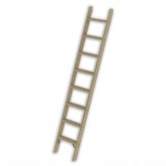 Günzburger Holz-Anlegeleiter ohne Traverse 12 Stufen